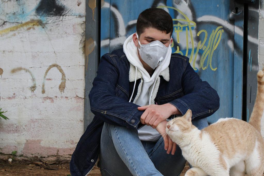 Corona-Junge+Katze